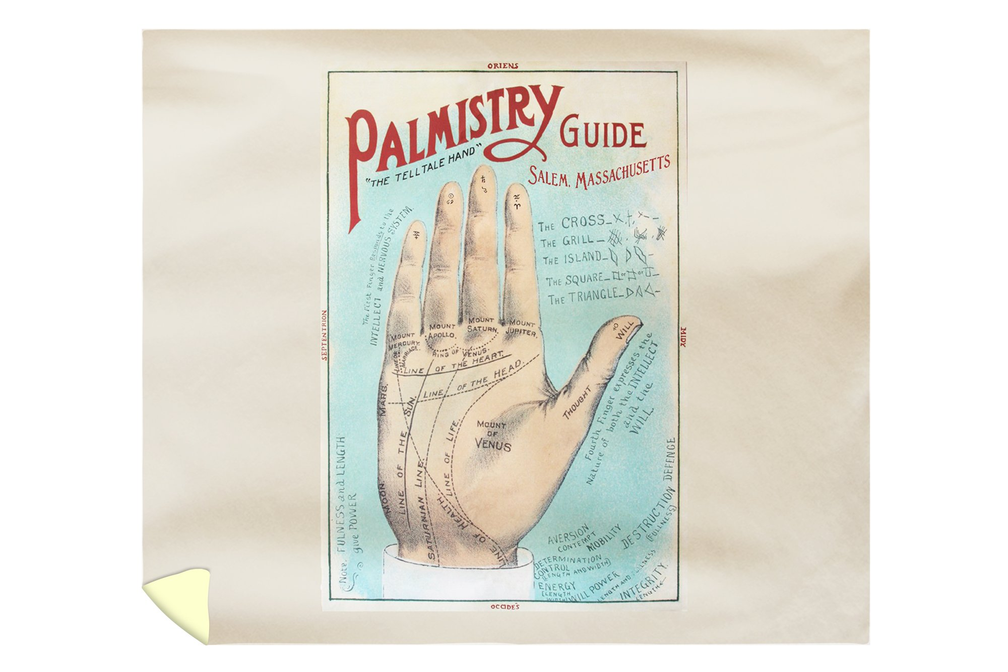 Salem, Massachusetts - A Picture of Good Health - Vintage Palmistry Chart Lithograph (88x104 King Microfiber Duvet Cover)