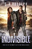 Indivisible: Book Six of the What's Left of My World Series