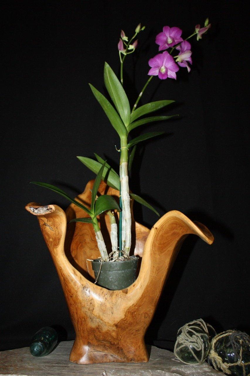 木製花瓶素朴なボウル彫刻18