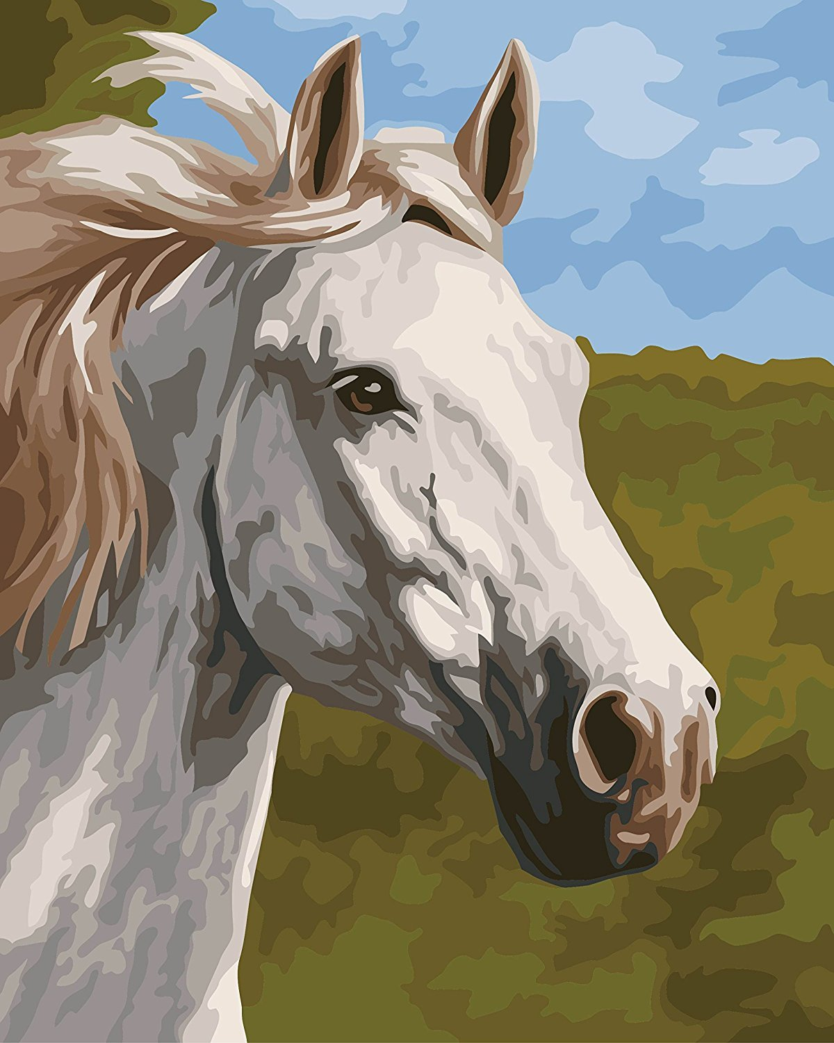 Lovebaby Oil Painting for Adults Kids Paint By Number Kit Digital Oil Painting Fine Horse 16X20 Inches Baby Love