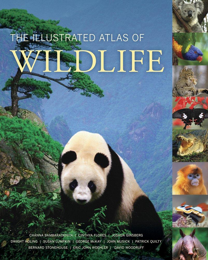 The Illustrated Atlas of Wildlife ebook