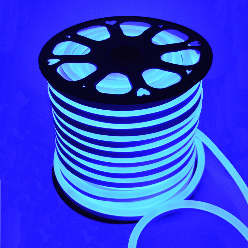Smd5050 LED Neon Rope Light Flex Party Decorative Home Indoor Outdoor 110v (Blue, 150Ft)