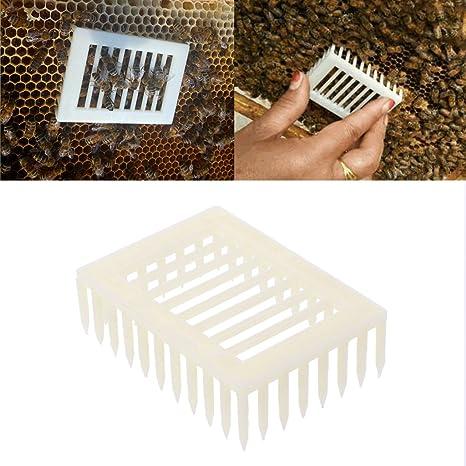 5 Plastic Queen Marker Cage Clip Bee Catcher Beekeeper Beekeeping Tool Equipment