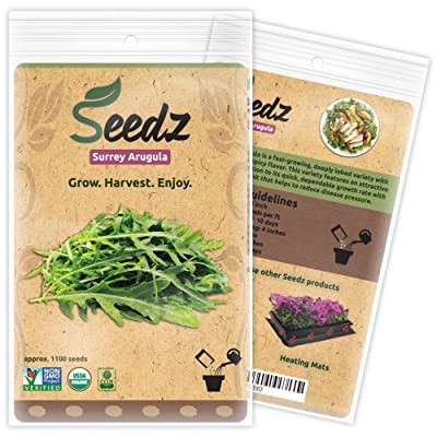 Organic ARUGULA Seeds (APPR. 1, 100) Surrey Arugula - Heirloom Vegetable Seeds - Certified Organic, Non-GMO, Non Hybrid -USA : Garden & Outdoor