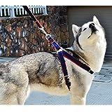 Pettorina regolabile anti-strattoni con imbottitura e guinzaglio in jeans resistente, per cani e gatti di piccole, medie e grandi dimensioni