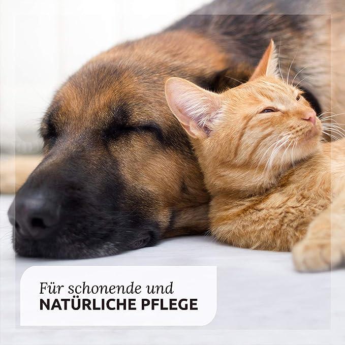Aceite de Onagra para Perros y Caballos (500ml.) - Suplemento 100% Natural para Perros | AniForte: Amazon.es: Productos para mascotas