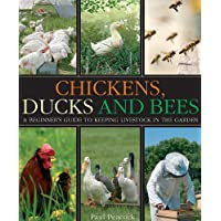 Chickens, Ducks and Bees: A beginner's guide to keeping livestock in the garden