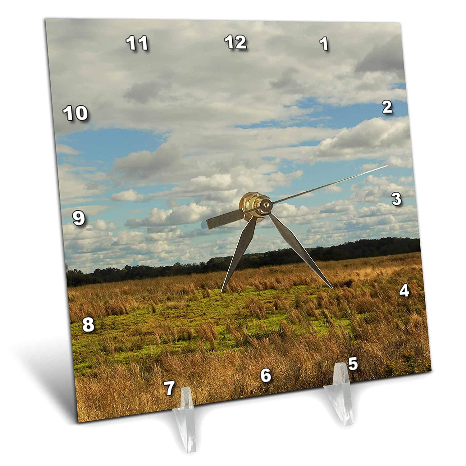 3dRose Stamp City - Nature - Photograph of an Open Field in South Carolina on a Cloudy Day. - 6x6 Desk Clock (dc_302844_1)