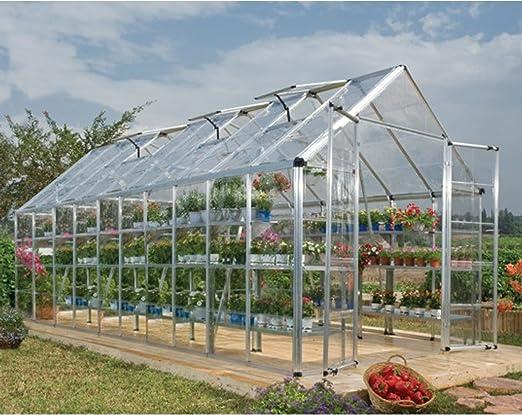 Palram Snap & Grow - Invernadero (8 x 20 cm): Amazon.es: Jardín
