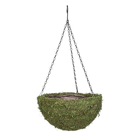 Amazon.com: 14 en. Ronda de musgo cesta colgante: Jardín y ...