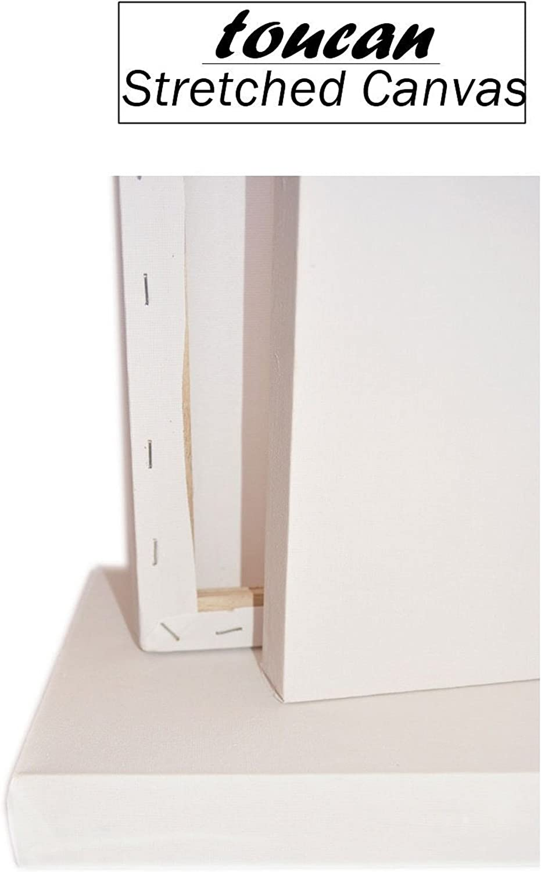 20cm x 25cm Framed Canvas Blank Plain Stretched For Oils /& Acrylics