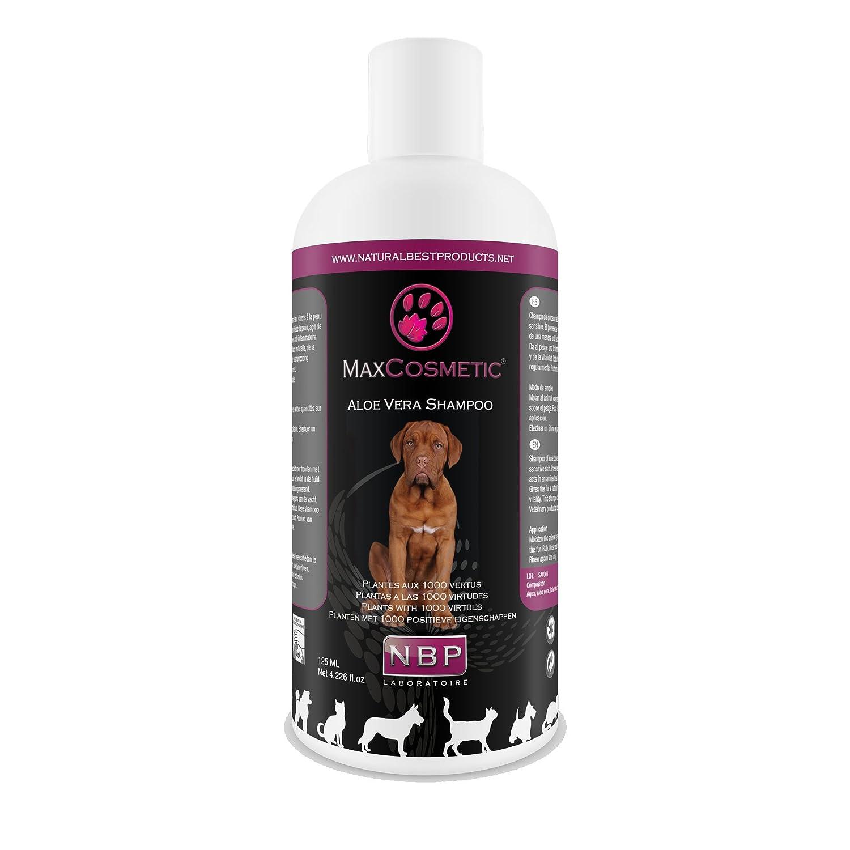 Max Cosmetic Aloe Vera Champú para Perros & Gatos 200 ML Champú Perros y Gatos: Amazon.es: Productos para mascotas
