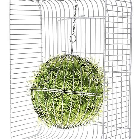 Su-luoyu bola de heno pelota dispensador comida acero inoxidable juguete para hámster conejo: Amazon.es: Productos para mascotas