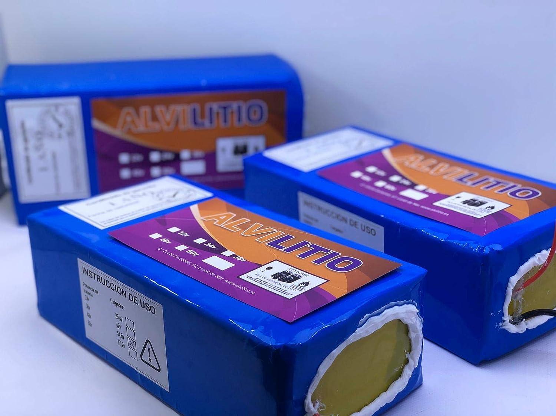 ALVILITIO Bateria de Litio Recargable 24V 9AH/12AH/15AH/18AH/21/AH/24AH/27AH/30AH Alta Potencia (24V 27AH)