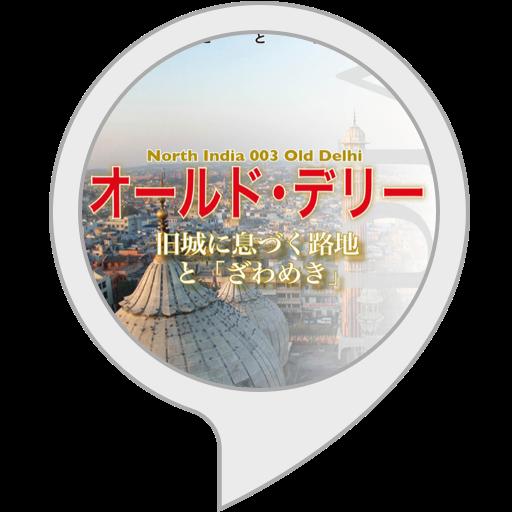 【Alexa版】北インド003オールド・デリー〜旧城に息づく路地と「ざわめき」