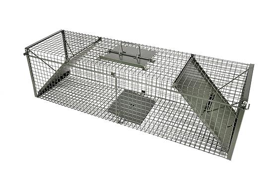 KrapTrap - Trampa para zorros, tejones y martas (130 x 35 x 35 cm ...