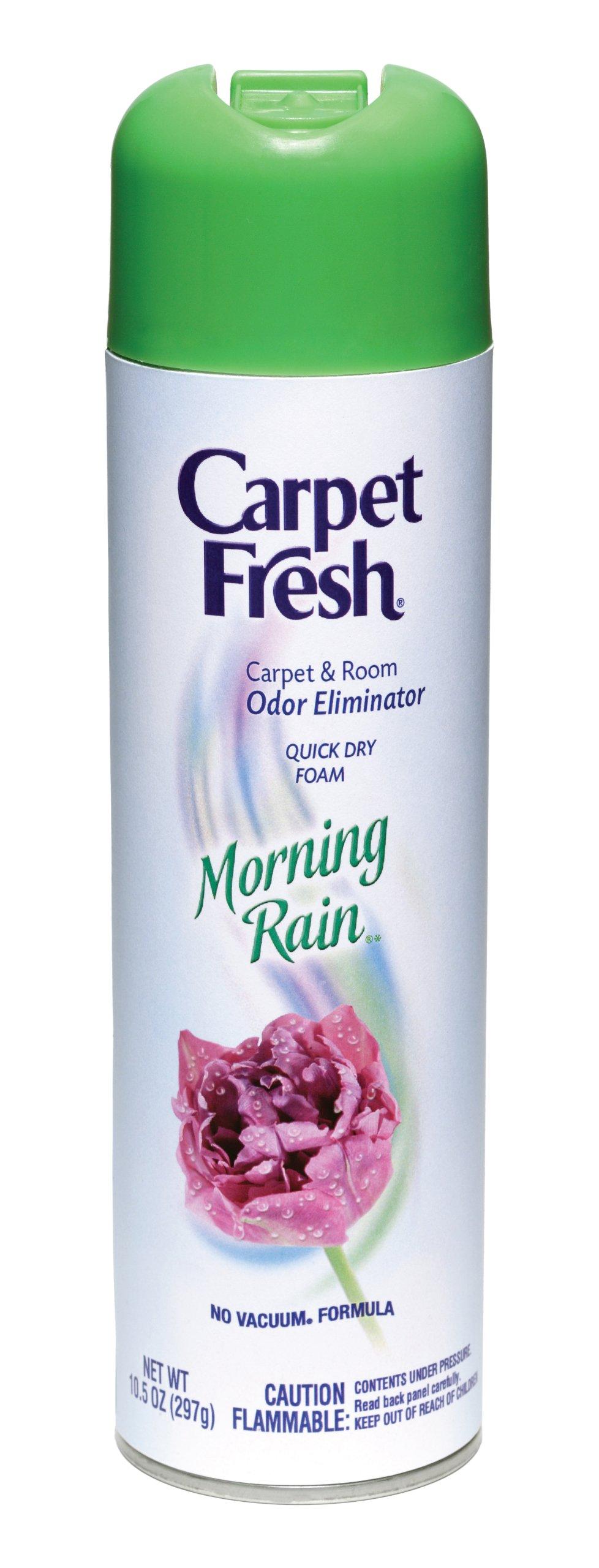 Amazon Com Carpet Fresh No Vacuum Foam Carpet Refresher