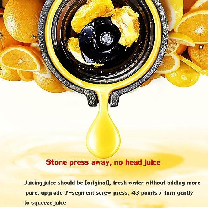 DULPLAY Exprimidor, Exprimidor, Lento masticar, Extractor del juicer, Prensa fría exprimidor, Con jarra de jugo y cepillo para limpiar, Jugo de fruta y ...