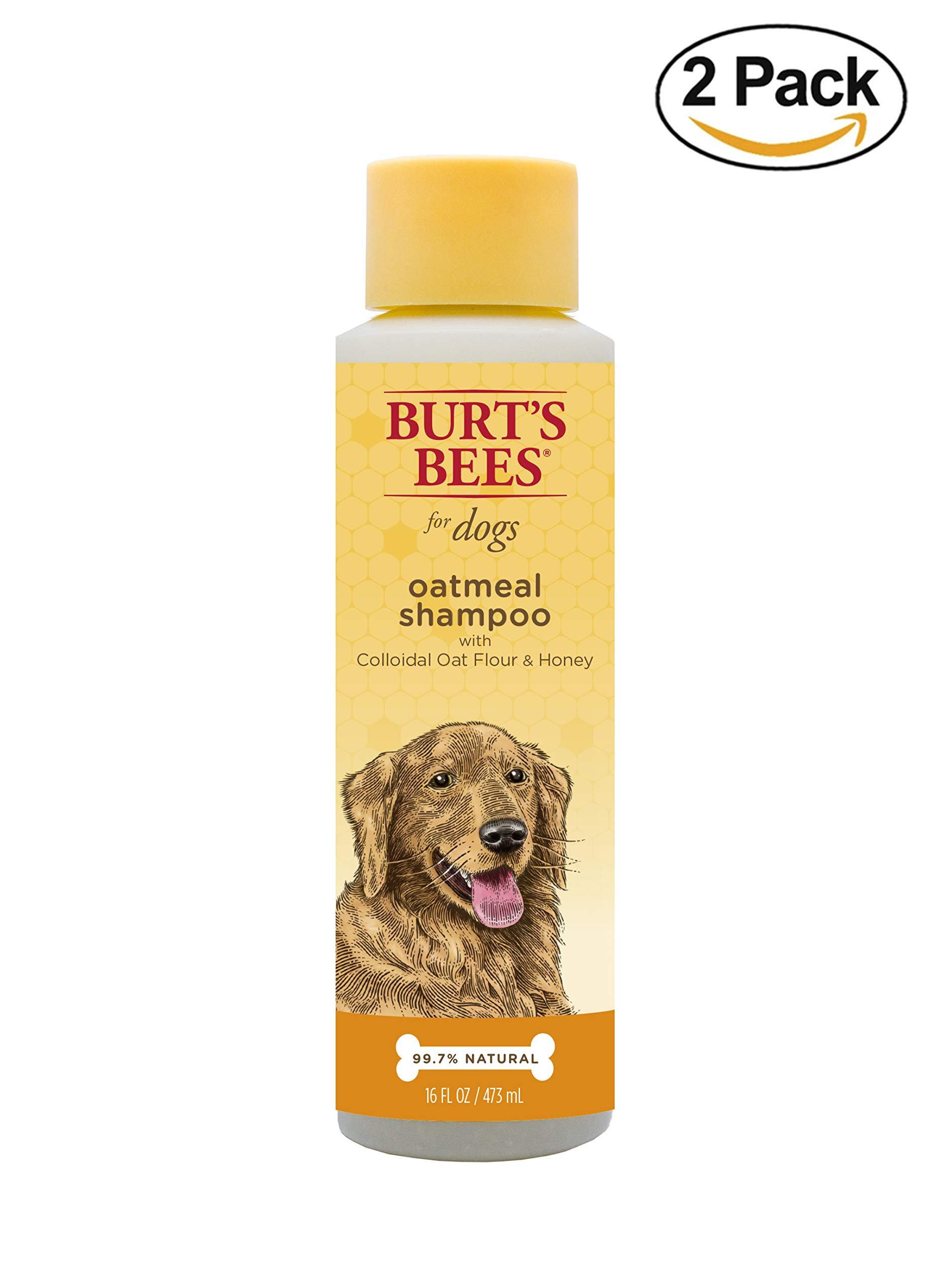 Burt's Bees All Natural Oatmeal Shampoo for Dogs | Made with Colloidal Oat Flour and Honey | Moisturizing Oatmeal Dog Shampoo, 16 Ounces, Pack of 2