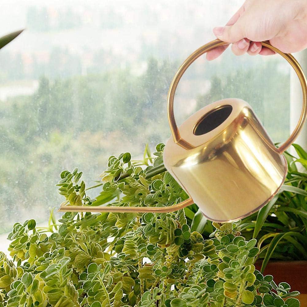 annaffiatoio da giardinaggio in acciaio inossidabile Annaffiatoio in ottone spruzzatore per piante da giardino con bocca lunga annaffiatoio con ugello lungo per piante succulente Fiori bonsai