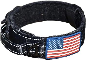 METAL BUCKLES Martingale Dog Collar  With 2 Handle Leash USA Made Tough