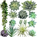 Supla Pack of 14 Artificial Fake Succulent Plants Bulk Unpotted Faux String of Pearls Echeveria Stems Succulent Picks in…