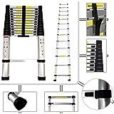 Todeco - Teleskopleiter, Klappleiter - Maximale Belastbarkeit: 150 kg - Material: Aluminiumlegierung - 3,8 Meter, EN 131