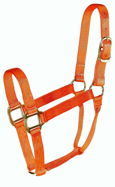 orange Large, 1100-1600 pounds orange Large, 1100-1600 pounds Hamilton 1-Inch Nylon Quality Halter for 1100 to 1600-Pound Horse, Large, orange