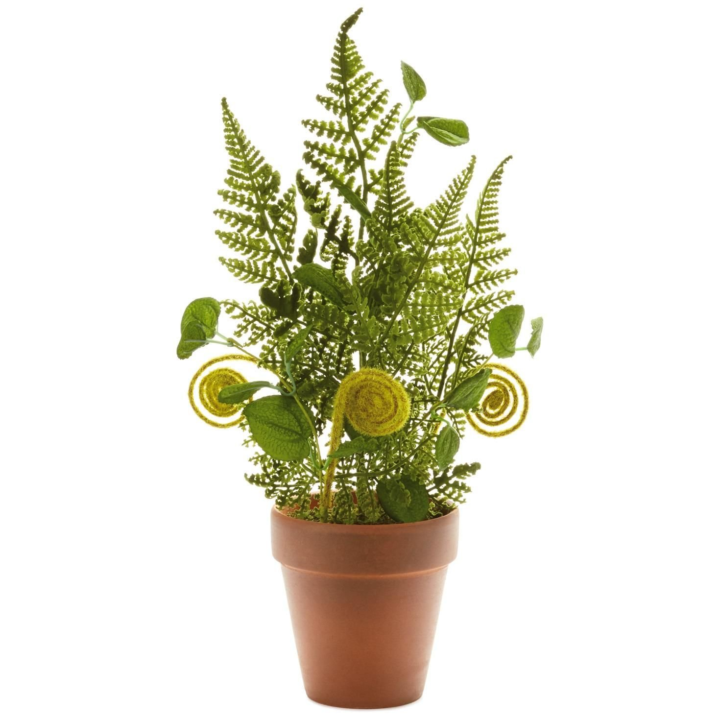 Fern Potted Artificial Plant Decoration, 14'' Decorative Accessories Animals & Nature