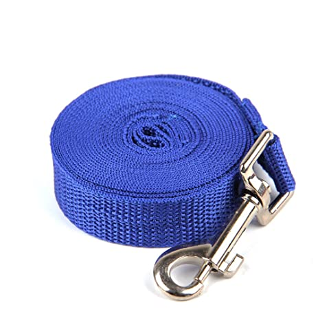 Superbe 10FT Long Lead Nylon Dog Leash For Training Play Camping Or Backyard  Suitable For Medium Small