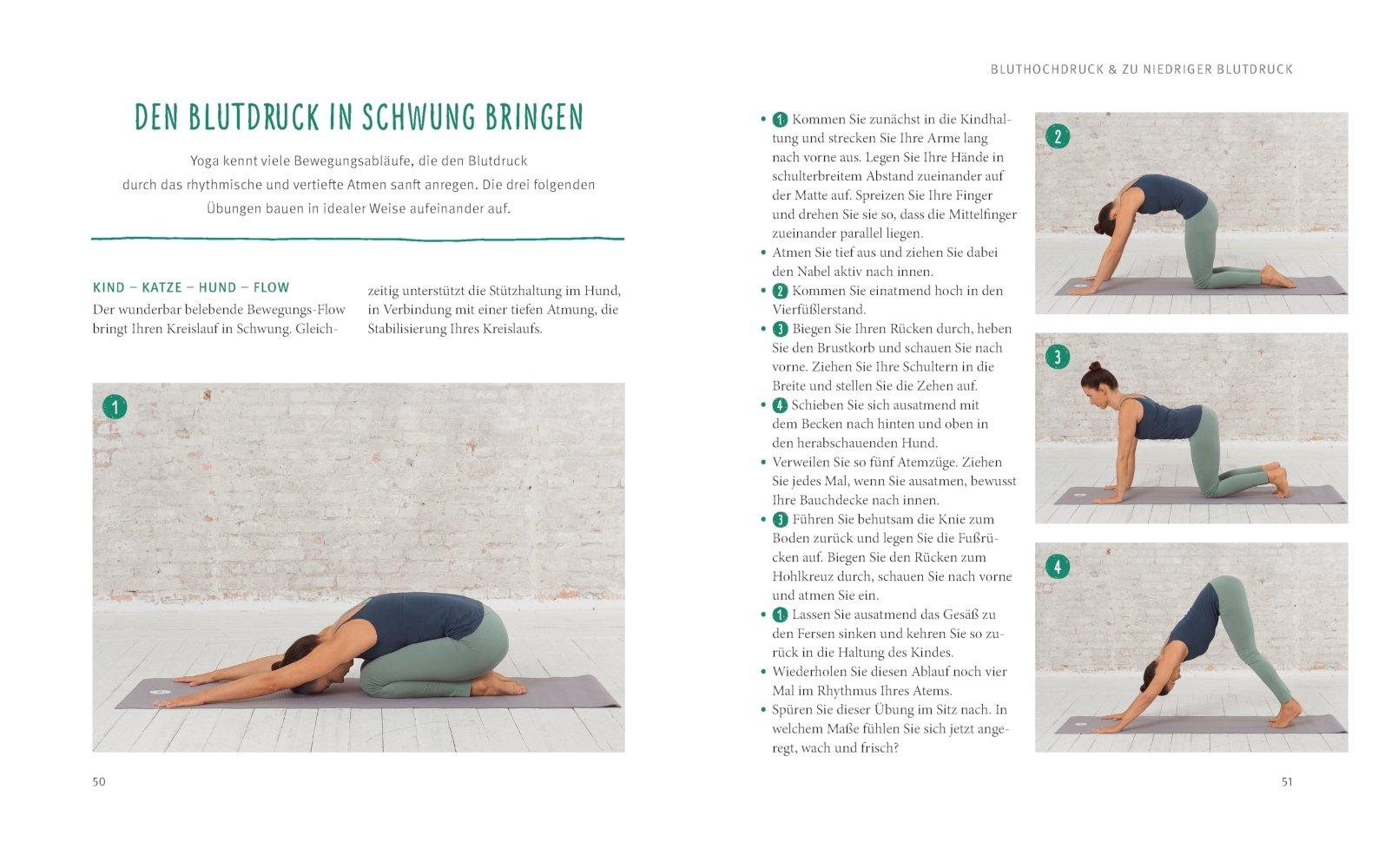 Ausgezeichnet Yogalehrer Lebenslauf Ideen - Entry Level Resume ...