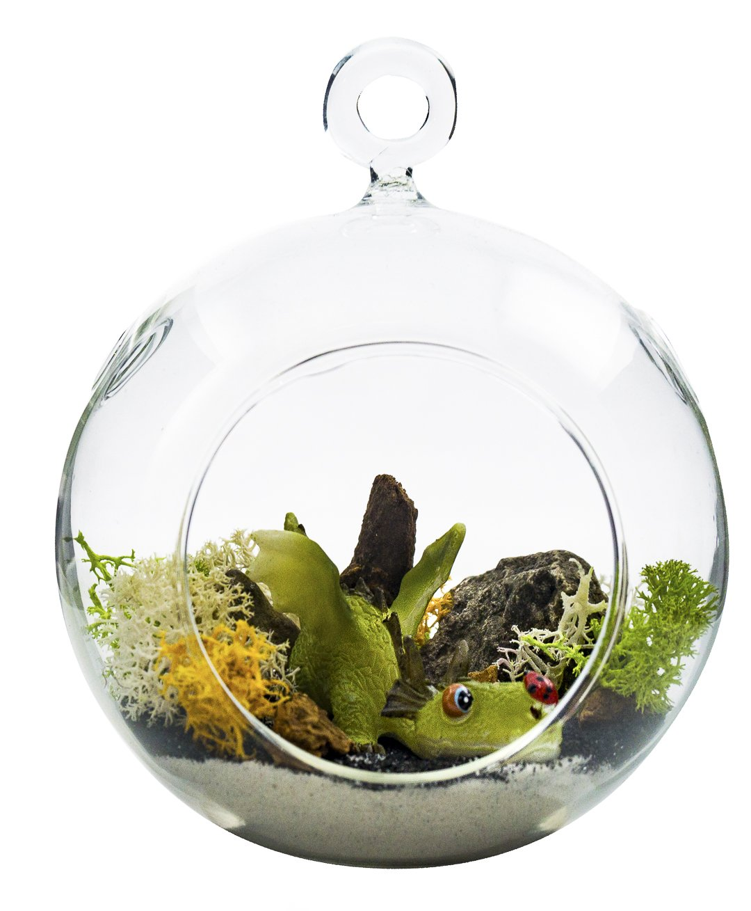 "Terrarium Kit | Ferocious Dragon with Ladybug | Dragon Series | Complete Terrarium Gift Set | 4"" Glass Globe Terrarium Container 