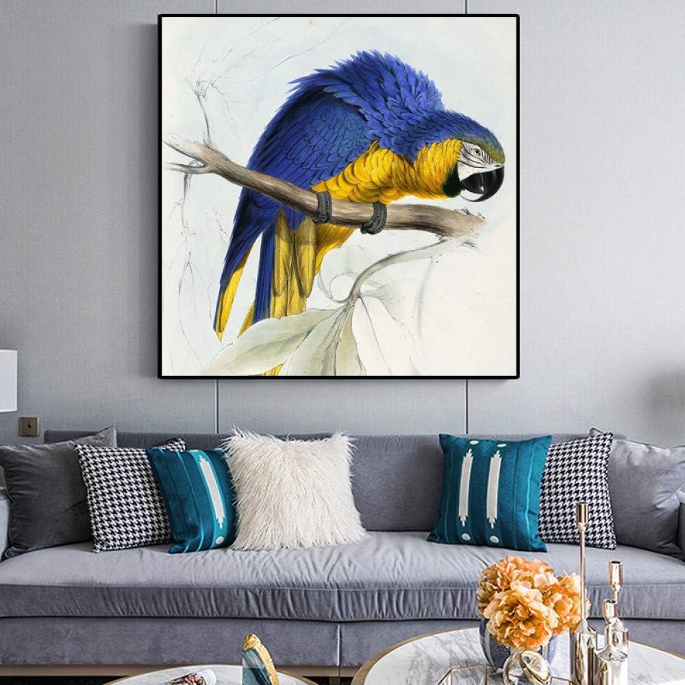 Bird beast loro pintura al óleo lienzo pintura decoración de la sala póster decoración del hogar pintura sin marco A 60x60cm