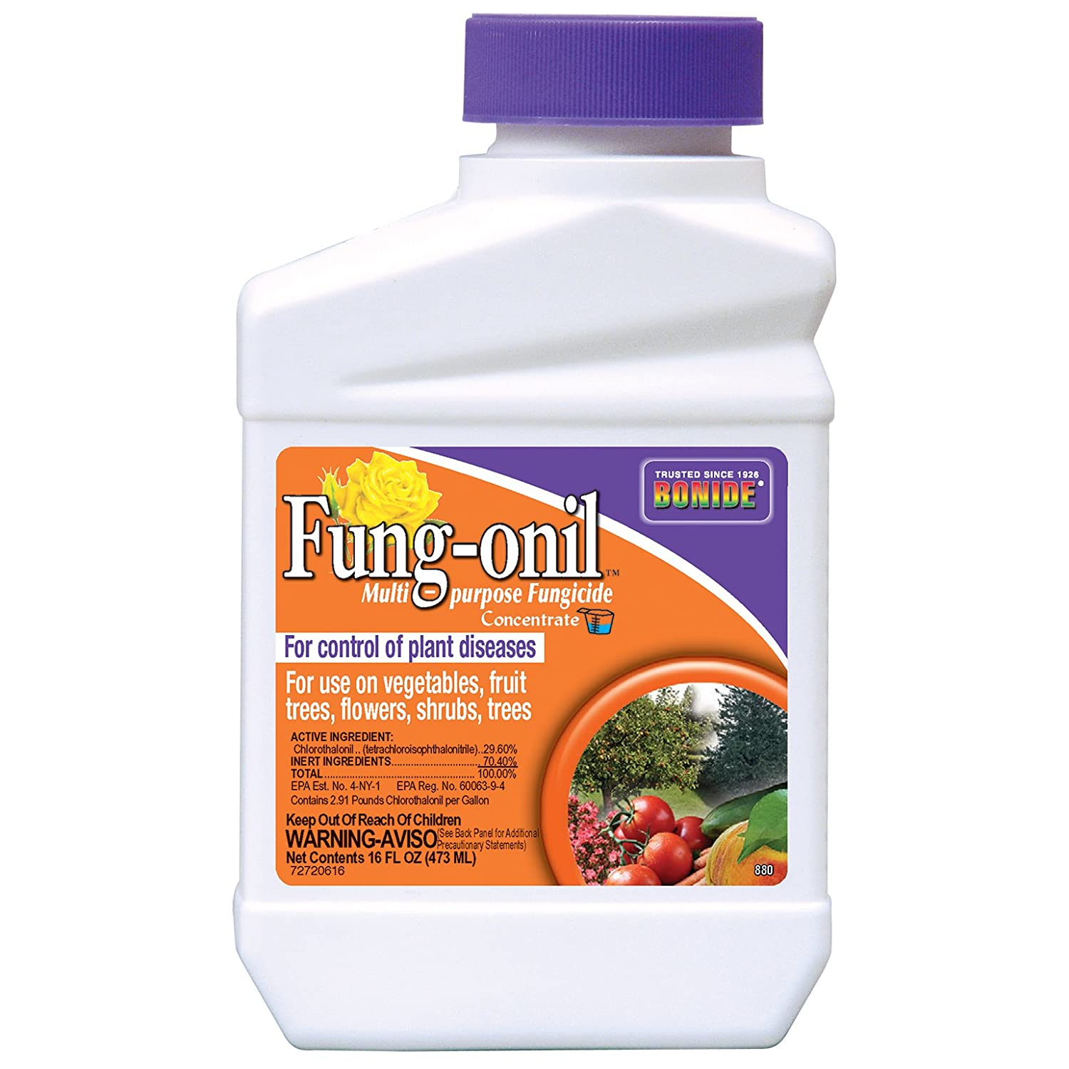 Amazon.com : Bonide Products 880 Fungonil Fungicide, 16-Ounce ...