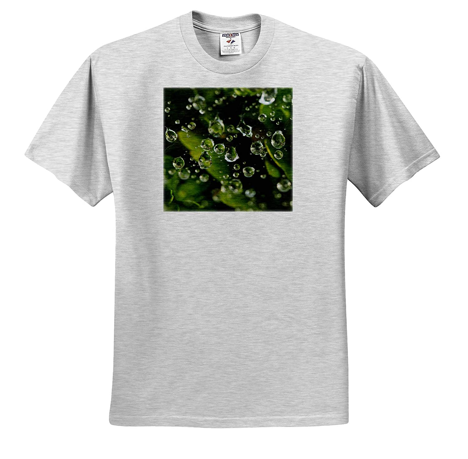 ts/_319065 Nature 3dRose Stamp City Macro Photograph of Raindrops on a Spiderweb Over Green Leaves - Adult T-Shirt XL