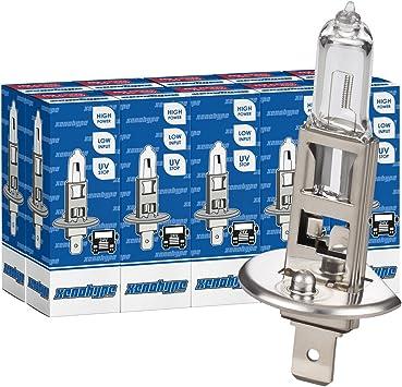 10x H1 Xenohype Classic Halogen Lkw Lampe 24v 70 Watt P14 5s Auto