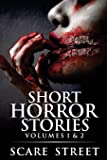 Short Horror Stories Volumes 1 & 2: Scary Ghosts, Monsters, Demons, and Hauntings