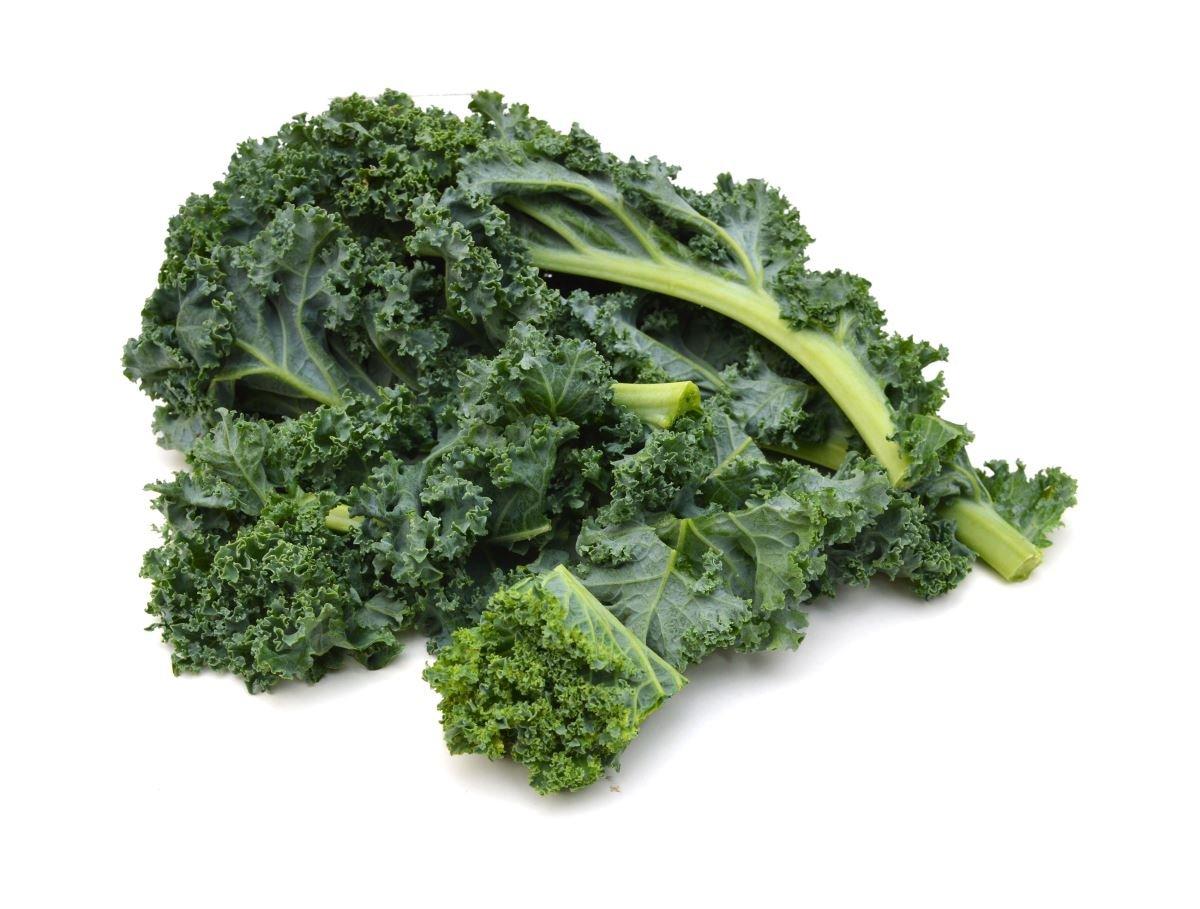 Kale Halbhoher grüner krauser - 50 g de semillas - semilla: Amazon ...