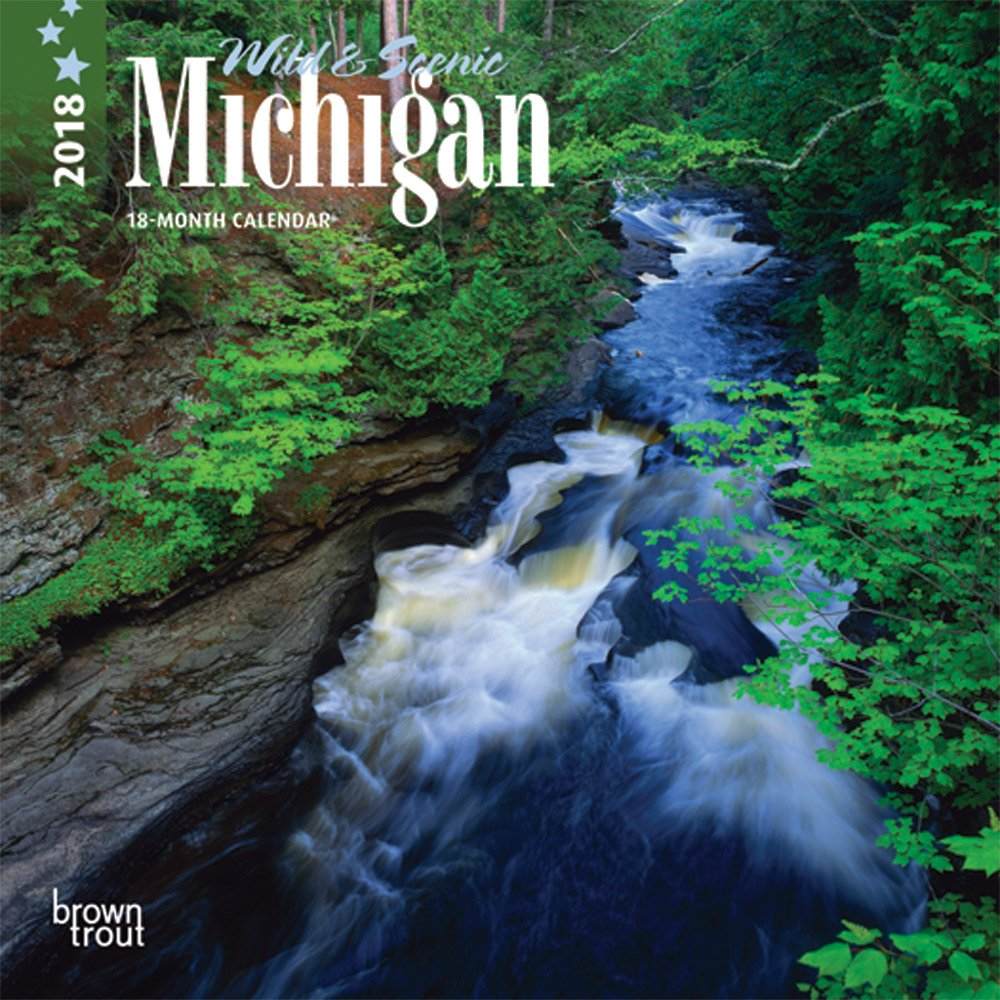 Michigan, Wild & Scenic 2018 7 x 7 Inch Monthly Mini Wall Calendar, USA United States of America Midwest State Nature (Multilingual Edition) pdf