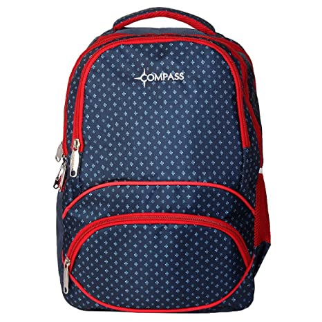 Compass Polyester 28 Ltrs Multi-Color Spacious Stylish Trendy Waterproof  Backpack Casual Bag for Boys 064c1643353e7