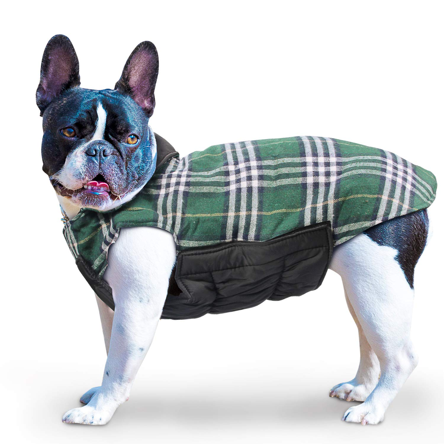 REENUO Pet Dog Jackets Windproof Warm Coats - Snug British Style Plaid Reversible Vest Clothes Autumn Winter Padded Waistcoat Chest Protector Suitable for Small Medium Large Dogs (XS-3XL) Green L