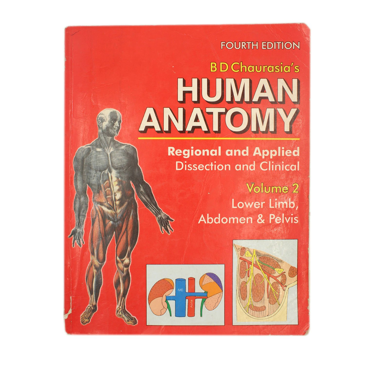 Buy Human Anatomy Regional And Applied Dissection And Clinical