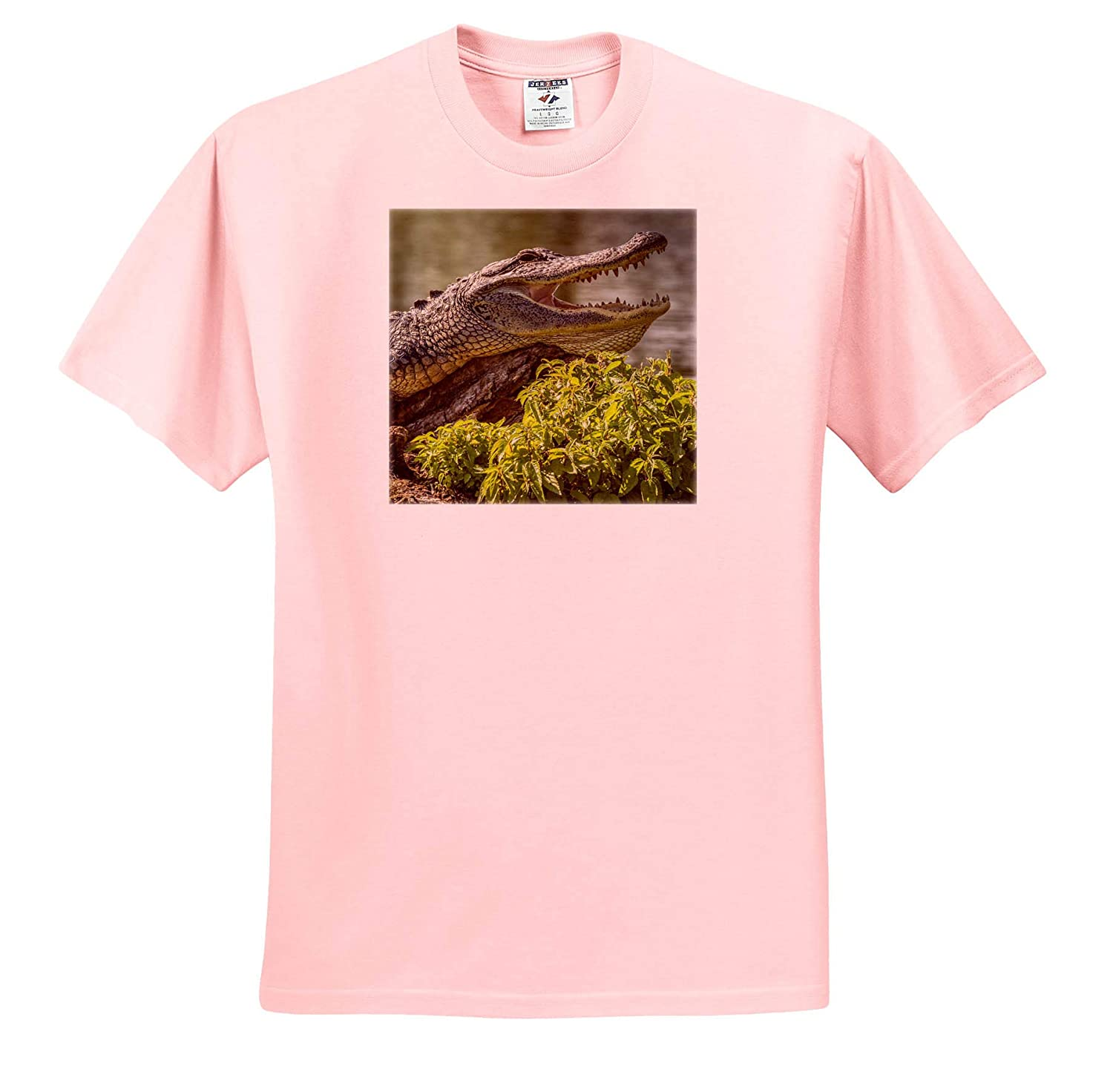 ts/_314833 Alligators 3dRose Danita Delimont Alligator Sunning on Log Atchafalaya - Adult T-Shirt XL Louisiana USA