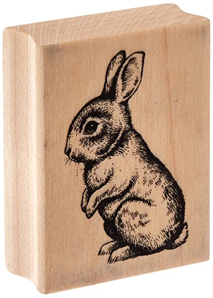 Amazon Inkadinkado Baby Bunny Wood Stamp For Easter Cards And Scrapbooking 225 W X 175 L Arts Crafts Sewing