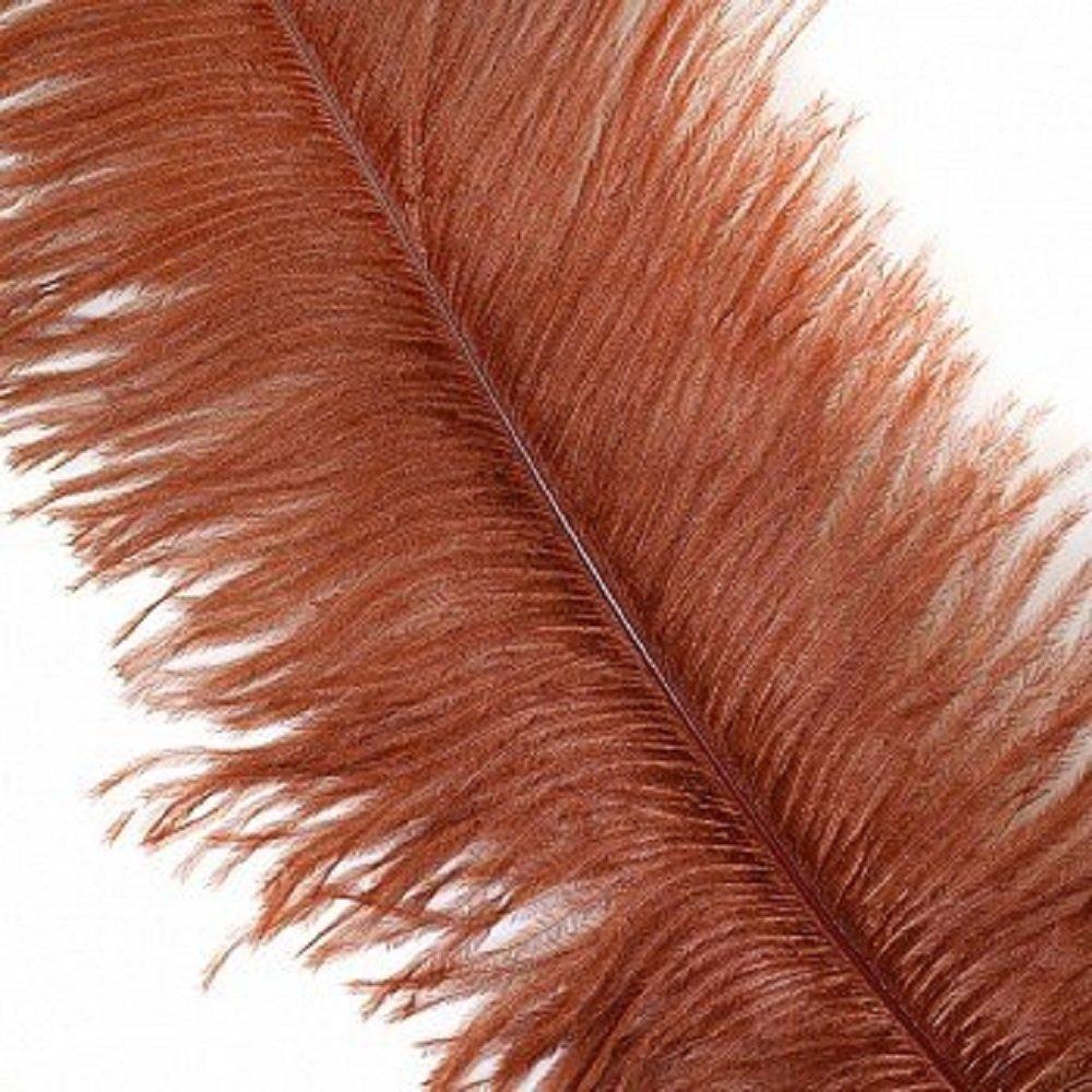 KOLIGHTセットの100ピース3540cm ナチュラルダチョウの羽のためのdiyホームウェディングパーティーオフィスデコレーション (コーヒー)  コーヒー B075T5NZZW