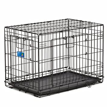 Amazon Top Paw Double Door Wire Dog Crate Black 30l X 19w