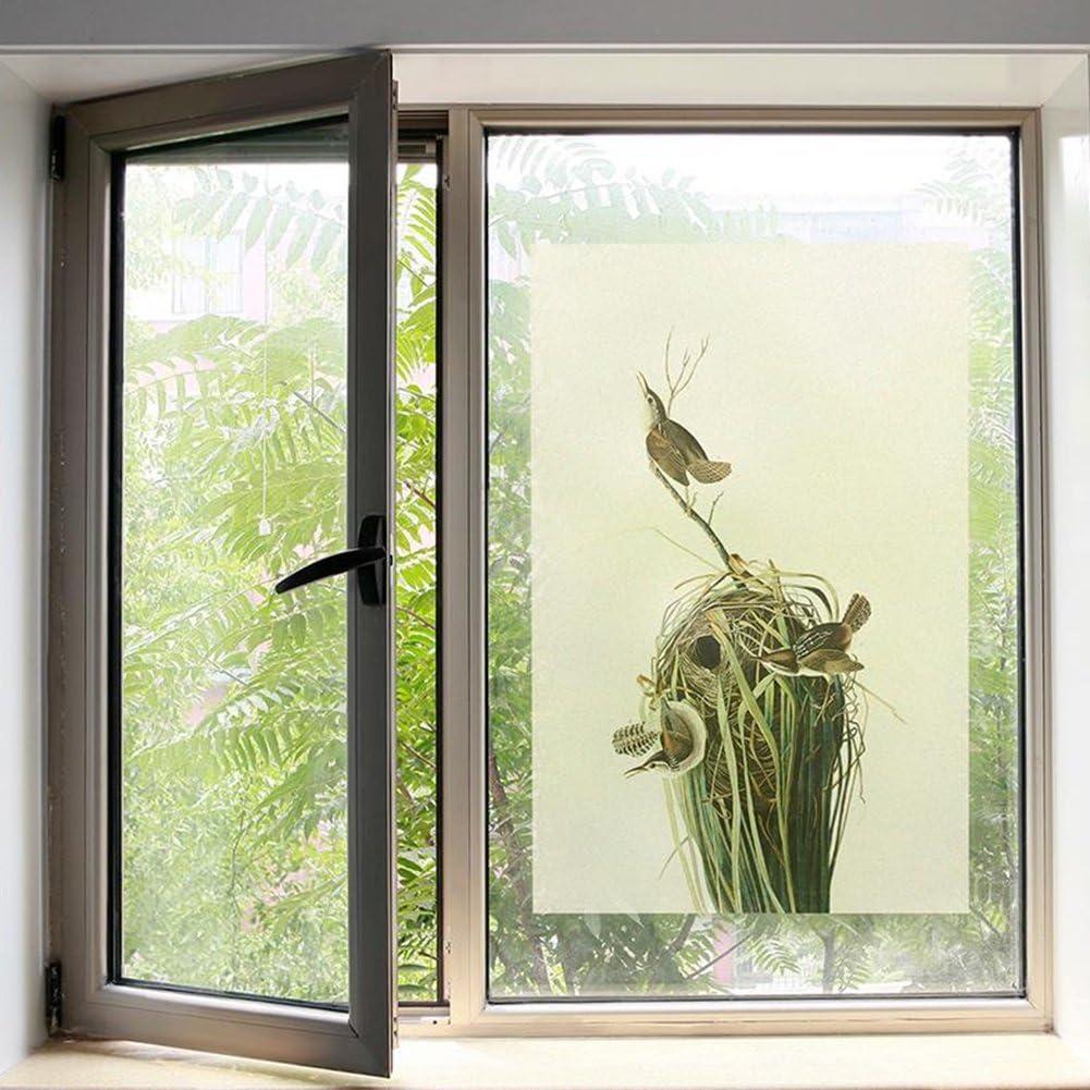 LJP Nido De Pájaro Material Esmerilado Película De Vidrio Opaco Pegatinas para Puertas Correderas baño De Oficina (Tamaño : 60cm*90cm): Amazon.es: Hogar