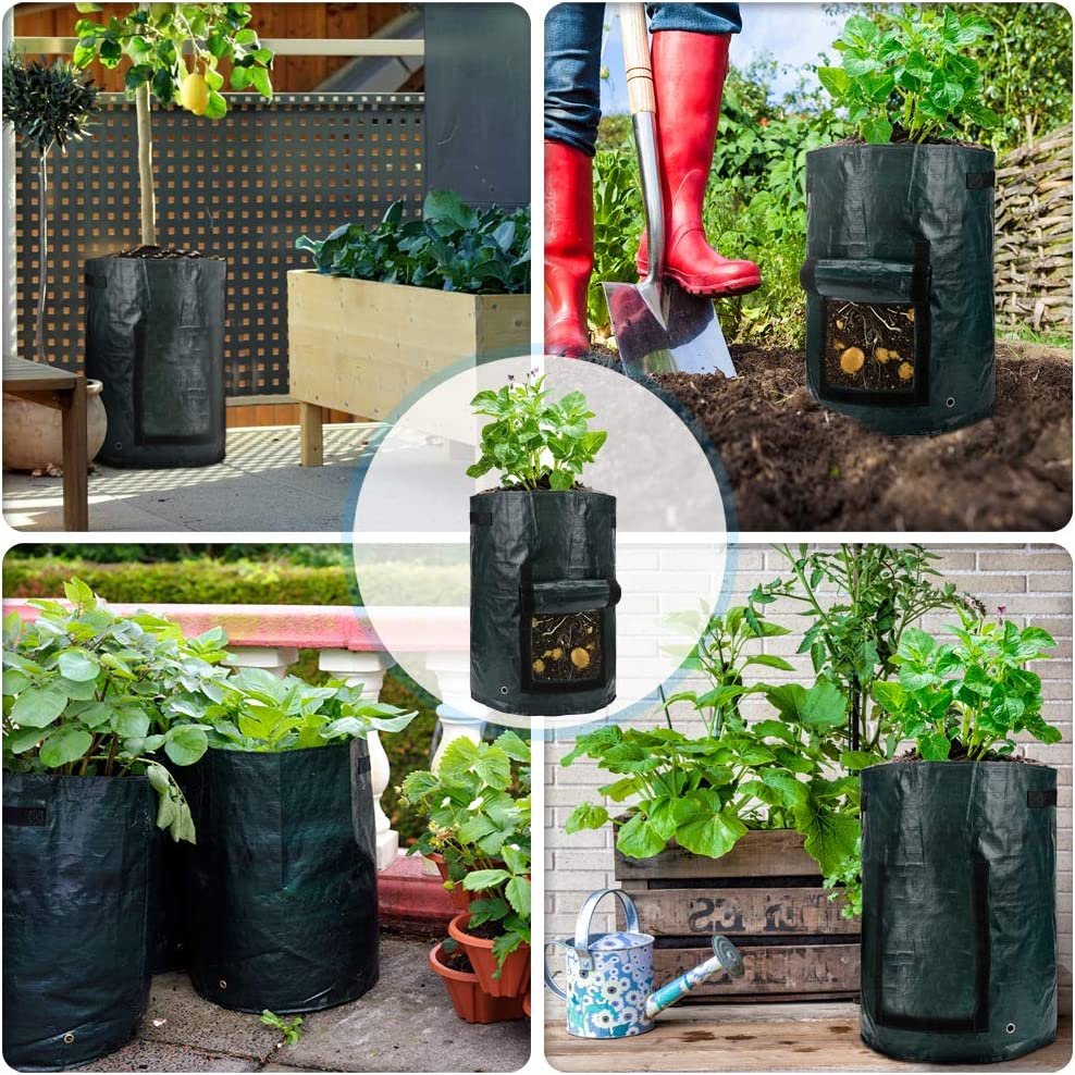 Premium Waterproof Vegetables Growing Bags Planting Pouch Outdoor Indoor for Carrot Garden Vegetable Planting Bag with Flap and Handles 2PCS 10 Gallons Potato Grow Bags Onion and Fruits