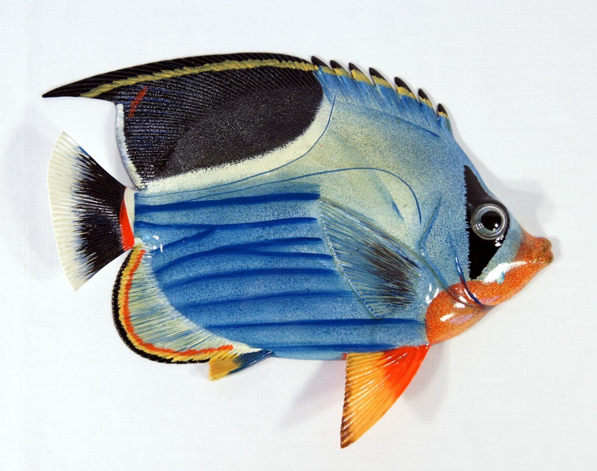 Amazon Handpainted Tropical Fish Replica Wall Mount Decor
