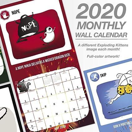 2020 DDW3312820 - Calendario de pared, diseño de gatitos ...